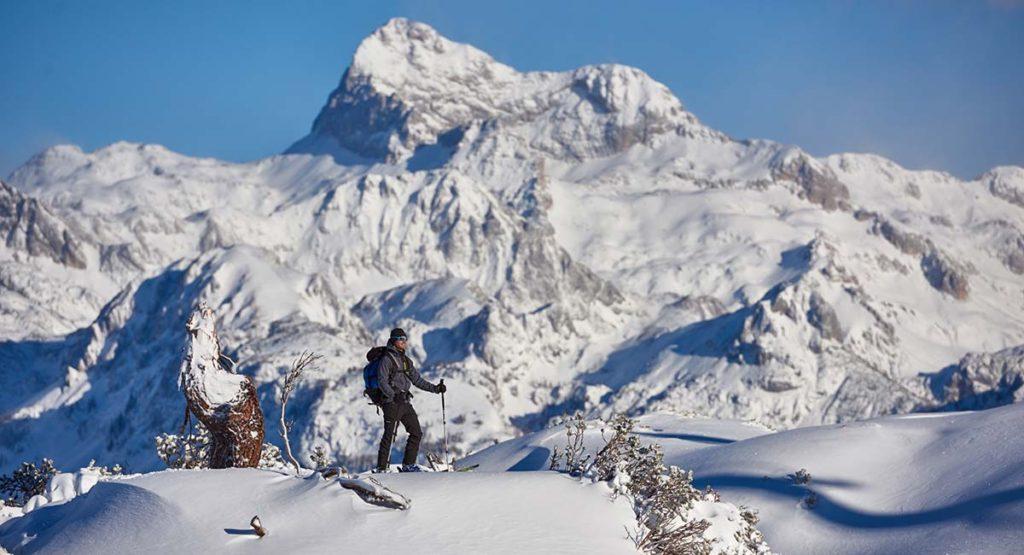 skiing-vogel