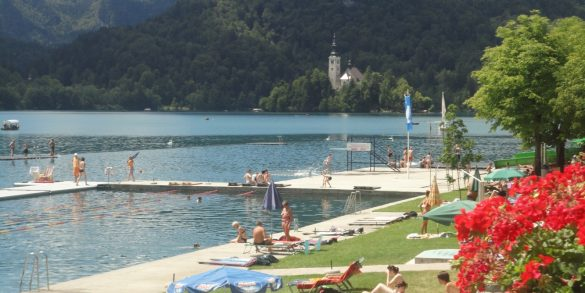 swimming-bathing-in-lake-bled