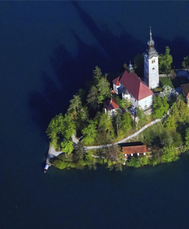 top_bled