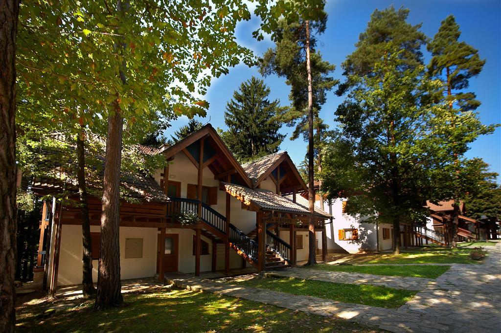 26-10873-Slovinsko-Terme-Zreče-Vily-Terme-Zreče-s-polopenzí