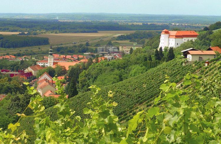26-10932-Slovinsko-Lendava-Hotel-Cubis-81158