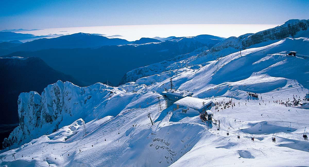 skiing-kanin